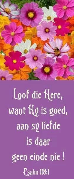 PSALMS 118:1 Loof die Here , want Hy is goed, want sy goedertierenheid is tot in ewigheid!