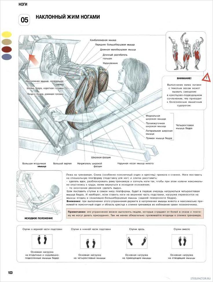 5. Наклонный жим ногами