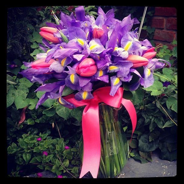 hermosas orquídeas moradas con toques en tulipanes rosa
