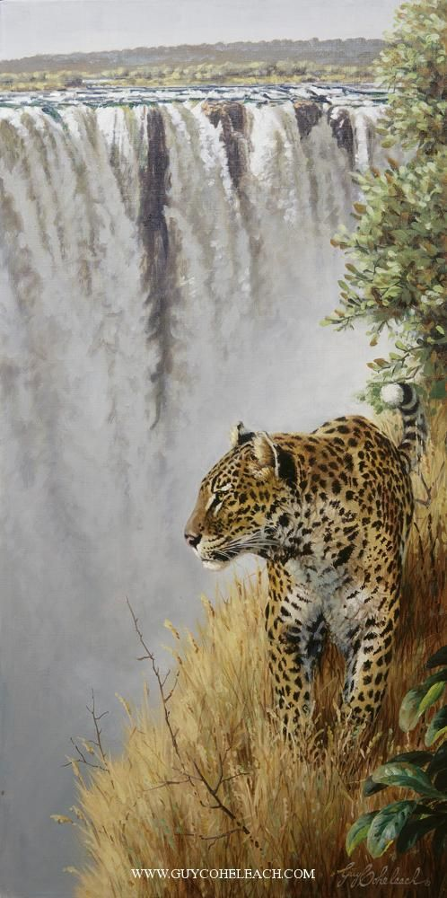 """Vic Falls Leopard"" 30"" x 15""                                                                                                                                                                                 More"