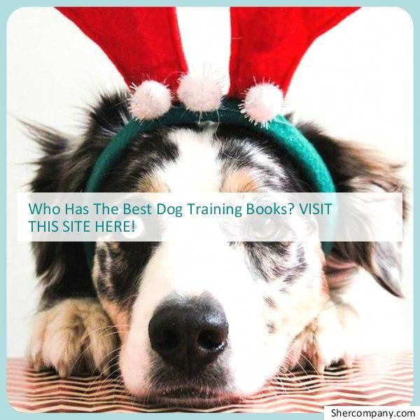 Get Free Techniques Tips And Information For Dog Training For