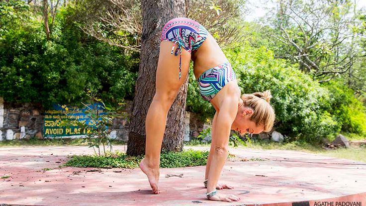 Step One: The Planks - great article re 4 Steps to Handstand - by Kino McGregor