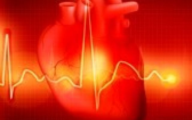 Analizzare l'allenamento con frequenza cardiaca e cardiofrequenzimetro