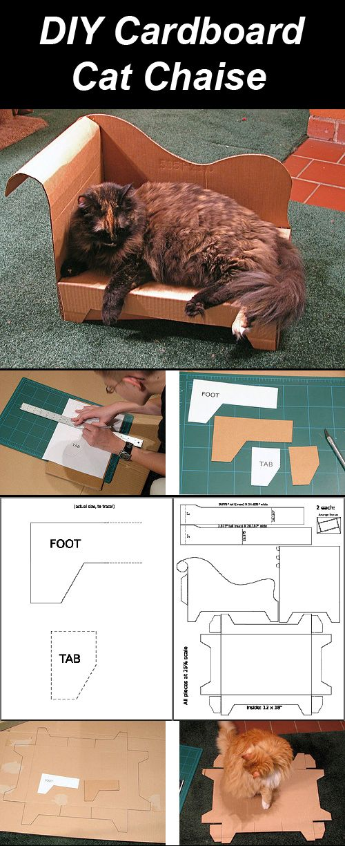 DIY Cardboard Cat Chaise Complete with a Pattern! Cat