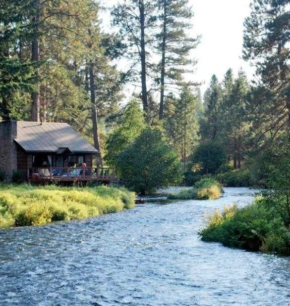 Cabin on the banks of a river, nestled in among the trees