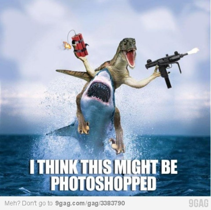 Why did this make me laugh sooo much!?Guns, Real Life, Funny Pics, Sharks Weeks, The Ocean, Funny Stuff, Dinosaurs, Funny Photos, Photoshop