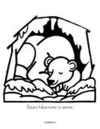 Bears Preschool on Hibernating Bear Color By Numbers