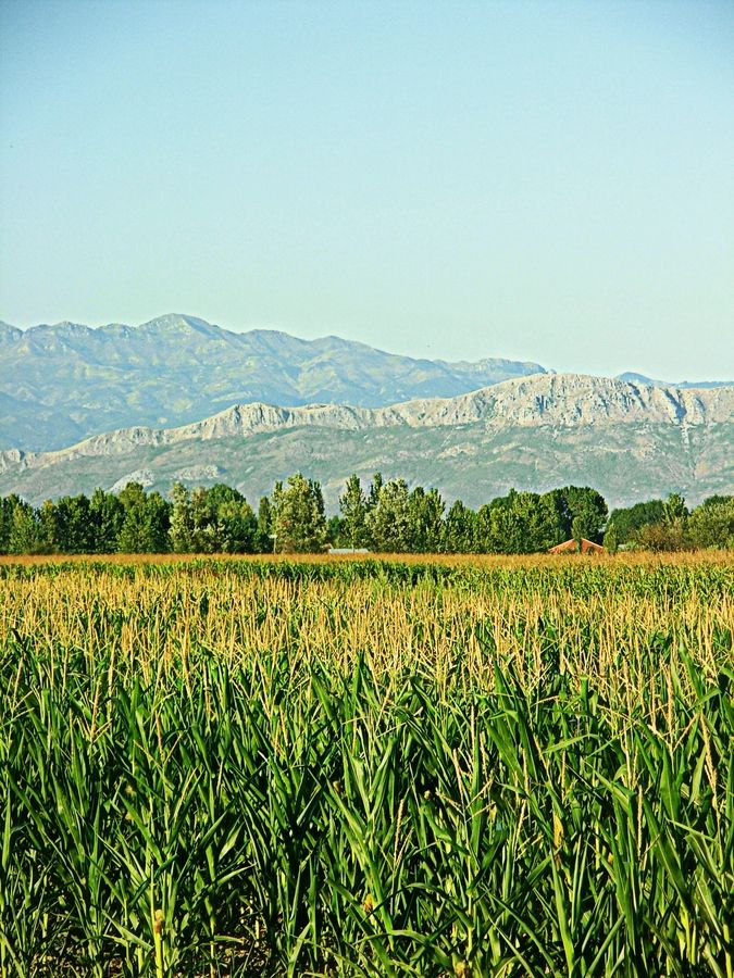 Albanian Landscape by Fioralba Duma, via 500px