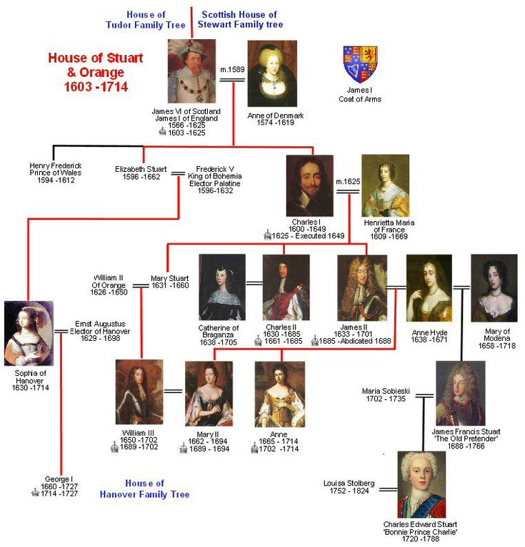 House of Stuart Family Tree   Royal Descendants | Alfred to Elizabeth II | Wessex | Normans | Plantagenet | Tudor | Scottish | Stuart | Hanover | Windsor   << Previous TreeMouse over images and click for informationNextTree >>