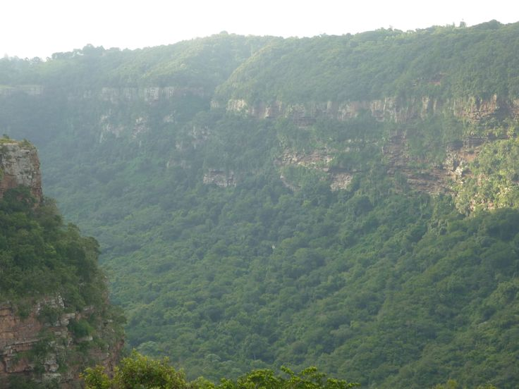 Krantzkloof in Kloof - my old neck of the woods - too beautiful ........miss it everyday ........