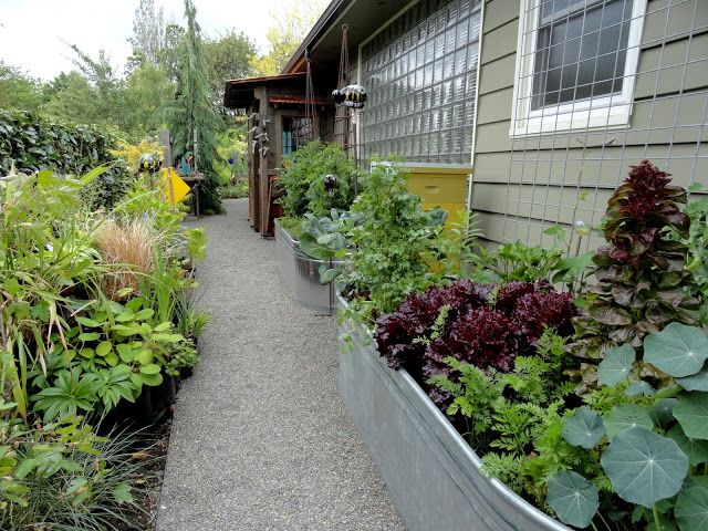 17 best images about side yard vegetable garden ideas on for Side yard landscaping ideas