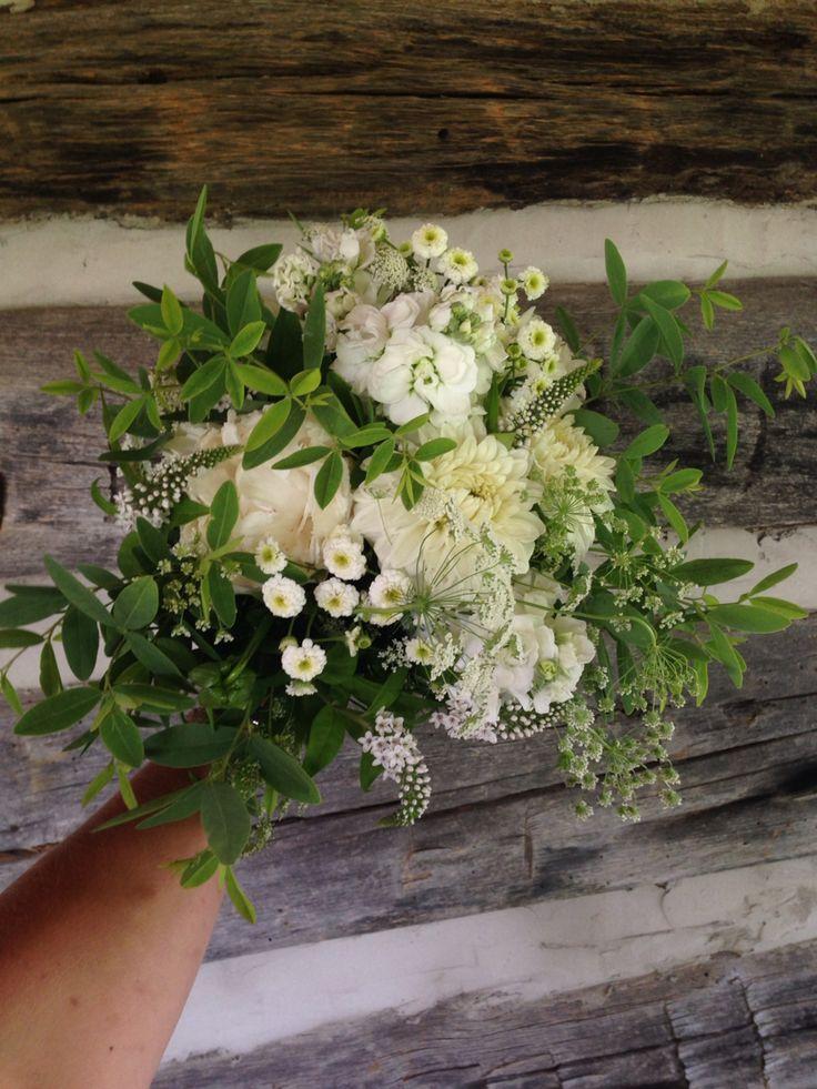 9 best June flowers at the farm images on Pinterest | June, Blossoms ...