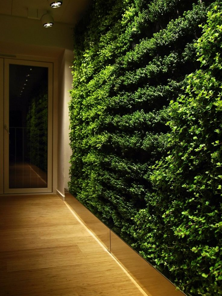 Best 25+ Indoor vertical gardens ideas on Pinterest | Wall planters,  Outdoor wall planters and Wall garden indoor
