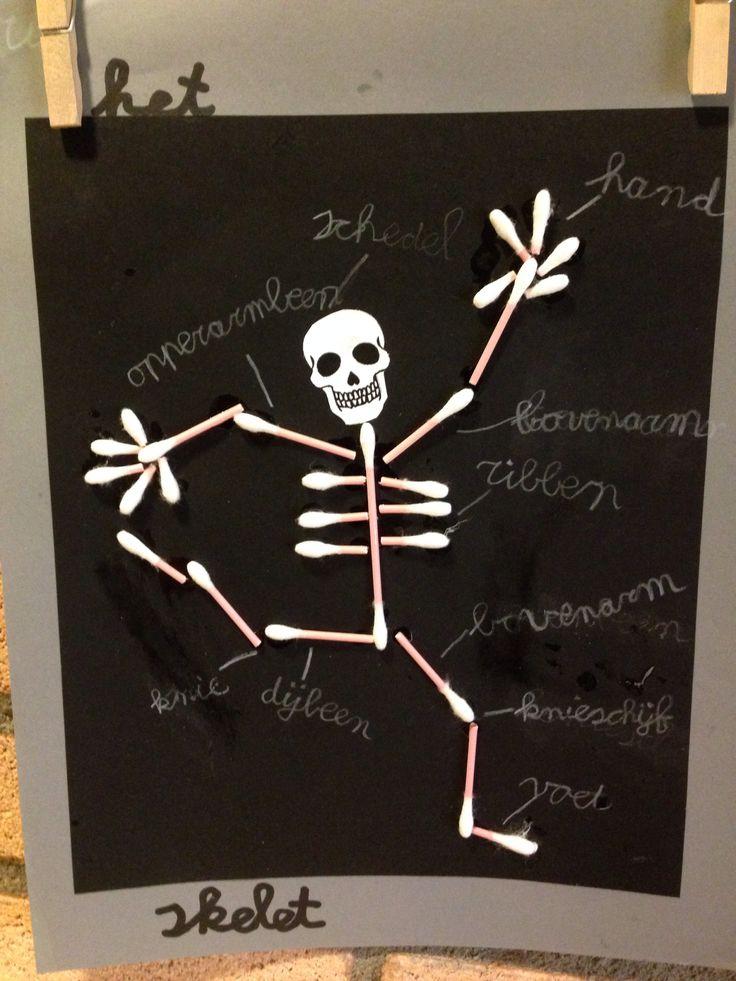 Menselijk lichaam #skelet #knutselen #groep 4/5