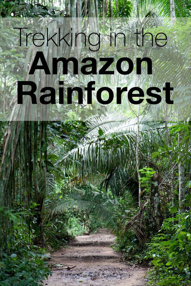 Trekking in the Amazon Rainforest.