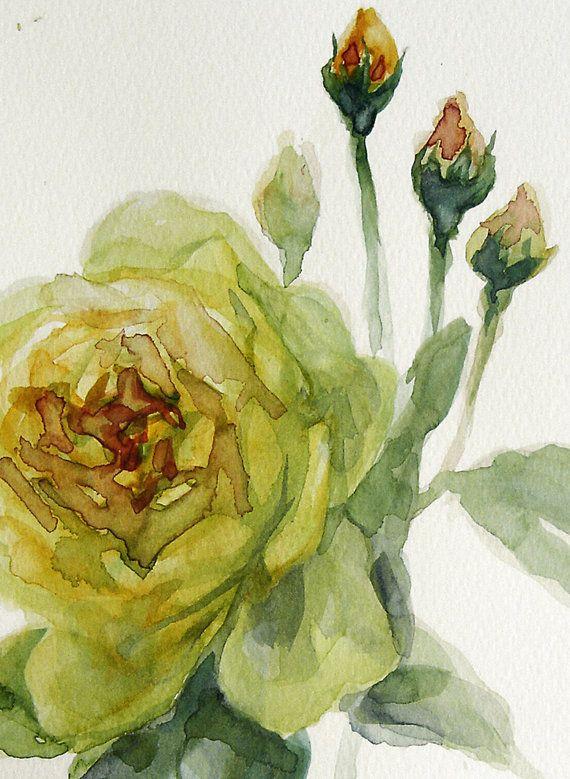 Yellow Tender Rose Original Painting Flower by VerbruggeWatercolor, $89.00