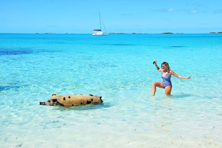 """Se não bastasse a água no tom mais turquesa que já vi (explodiu meu """"turquesômetro""""), Exuma, nas Bahamas, é super exótica."""