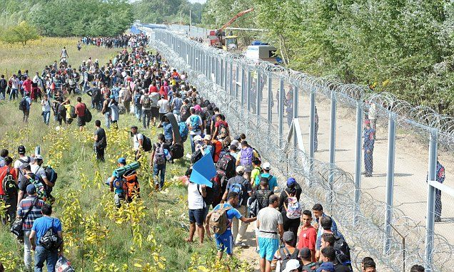 The EU logged 213,000 arrivals in April, May and June but only 44,000 of them were fleeing the Syrian civil war.
