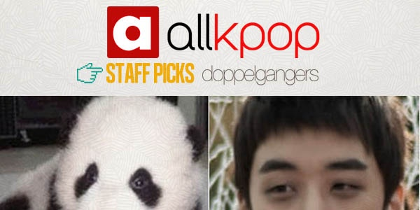 Staff Picks: 10 K-Pop Animal Doppelgangers #allkpop #kpop