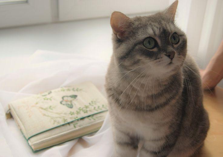 #кошка #блокнот #переплёт #скрап #творчество #скрапбукинг #рабочийпроцесс #блокнотручнойработы #ручнаяработа