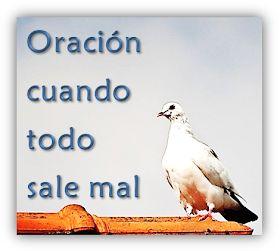 Oraciones.Center: Oración Pidiendo Perdón al Espíritu Santo – Cuando Todo Sal…