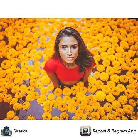 When things are looking dark we gotta remember the bright and beautiful things. Its everywhere around us.  @raskal #bali #flower #colors #balibabes #dashbali #dashhotel #dashhotelseminyak