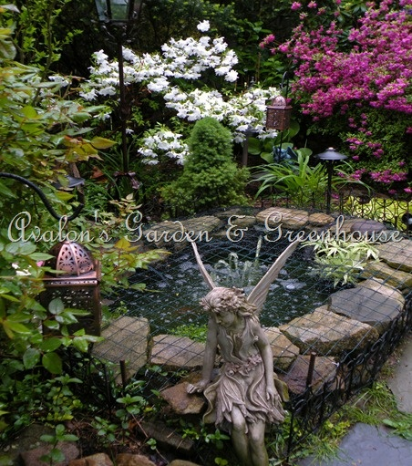 17 Best Images About Pond On Pinterest Garden Fencing