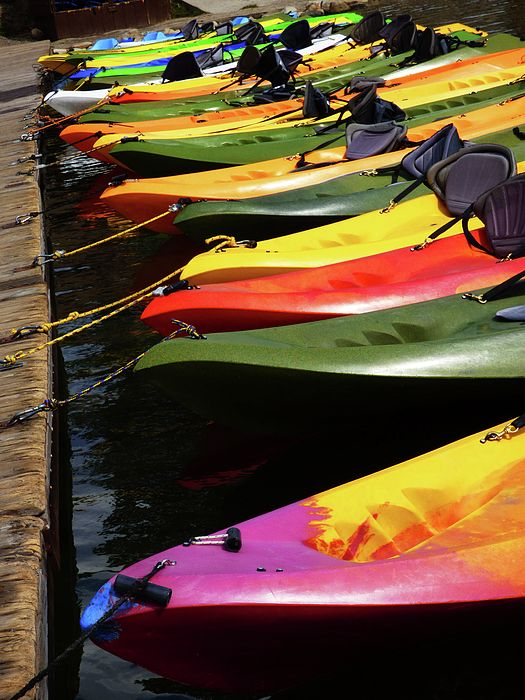 FINE ART PHOTO - Colorful red, yellow, green, and purple kayaks in a row tied at a dock.