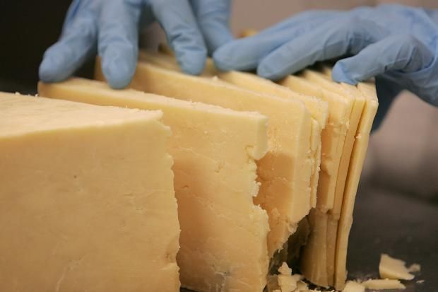 Cheese triggers the same part of the brain as hard drugs - hahahaha