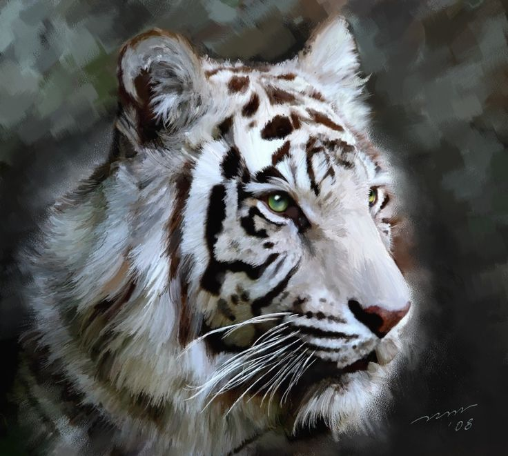 White Tiger painting | Tigers | Pinterest