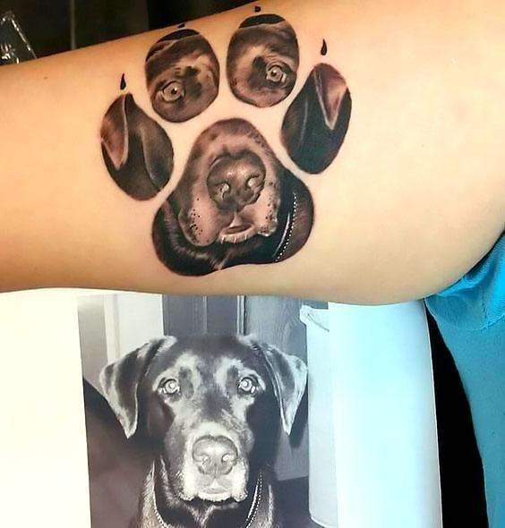 33 ideas lindas y encantadoras de los tatuajes del perro para los amantes del perro   – Zeus tats
