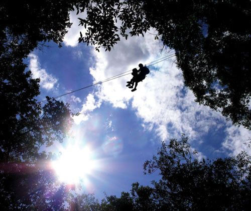 This was the second canopy tour built in South Africa and has been designed for the more adventurous nature lover with slides of up to 180 metres long, like the famous N3, making this a highlight of the tour. Expect to hear the loud calls of the Samango monkey, see a rare orchid or catch the flash of an Emerald cuckoo as it flies past. The Karkloof Canopy Tour® is a fully guided experience and will leave you with a sense of exhilaration and a taste for more.