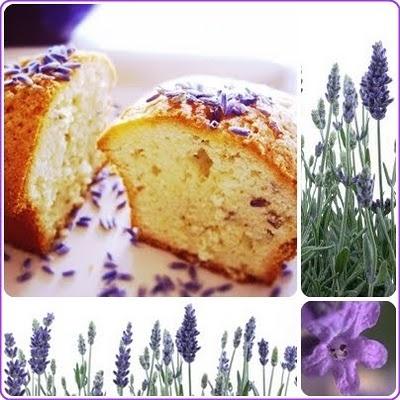 Sirope de alce: La magdalena de Proust: Magdalenas de lavanda y aceite de oliva / Madeleines à la lavande et à l'huile d'olive