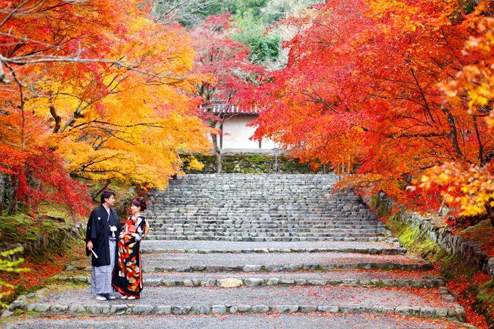 ダイナミックな紅葉の景色を独り占め。絶景でのロケーションフォトはあえて二人を控えめに小さく映すことがポイント