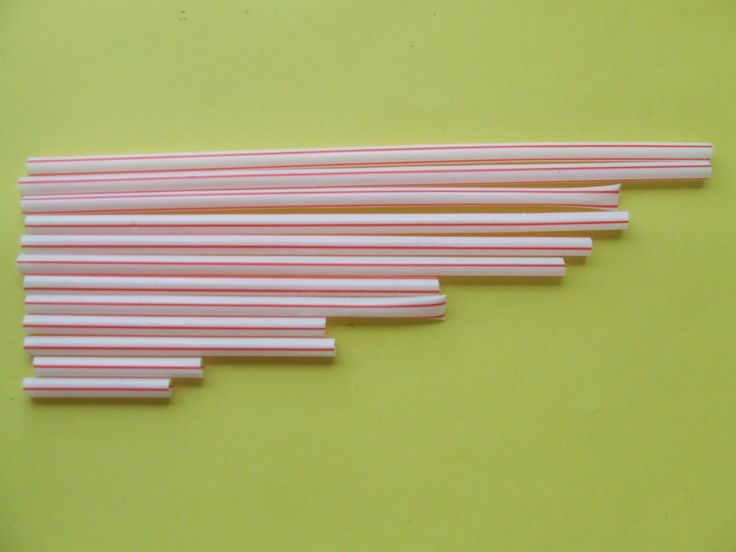 Photos ateliers autonomes comparer des objets selon leur longueur (IO 2008)