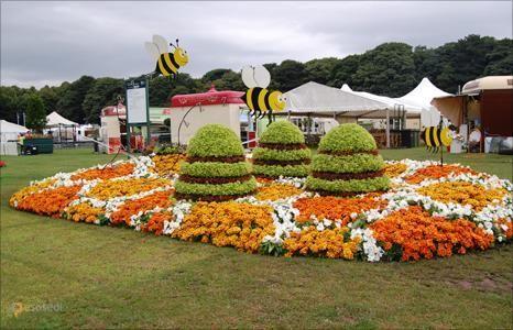Таттон-парк – #Великобритания #Англия (#GB_ENG) Tatton Park в английском Чешире прекрасен и сам по себе, но особую популярность ему обеспечивают регулярно проходящие здесь мероприятия - фестивали цветов, различные ярмарки и выставки под открытым небом. Всего таких событий за год насчитывает около сотни, а значит, отправляясь в парк в любое время можно быть абсолютно уверенным, что застанешь что-нибудь интересное. http://ru.esosedi.org/GB/ENG/1000098715/tatton_park/