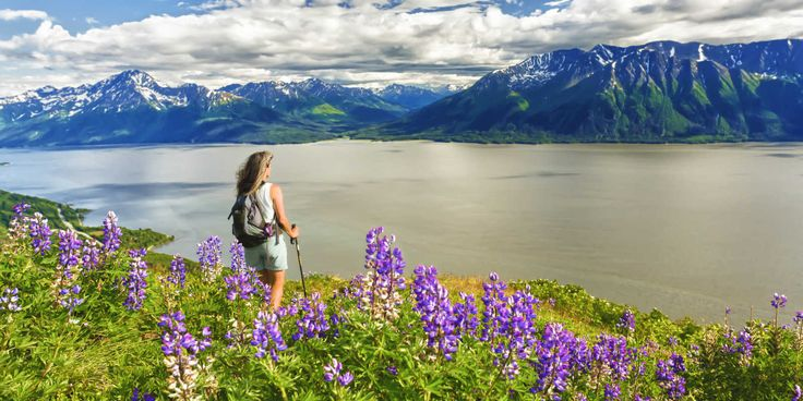 ANCHORAGE:  Watch for Dall sheep and beluga, hike countless trails, and see the astonishing bore tide roll past on Turnagain Arm.  Near the highway with plenty of access points for hiking a laundry list of trailheads.