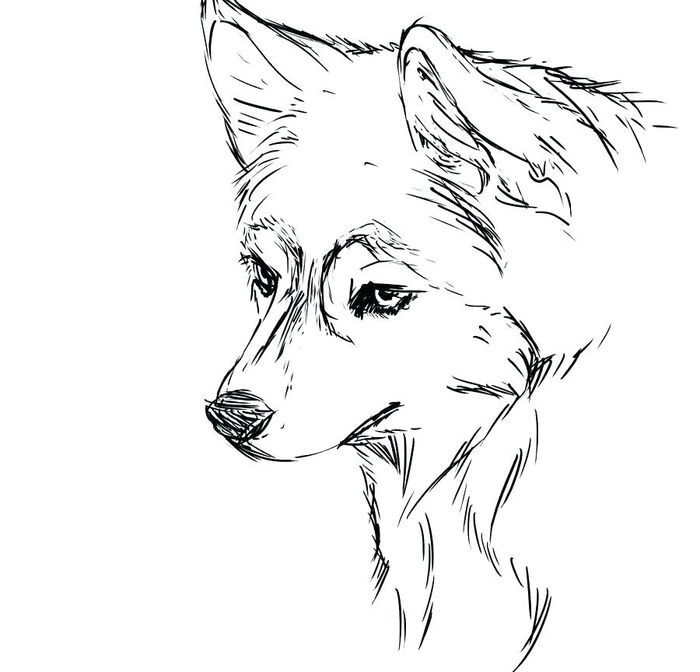 Cute Realistic Husky Coloring Pages In 2020 Animal Coloring Pages Dog Coloring Page Puppy Coloring Pages