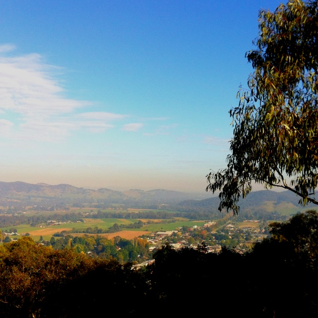 Early morning view of Myrtleford from Reform Hill lookout. I <3 my hometown!