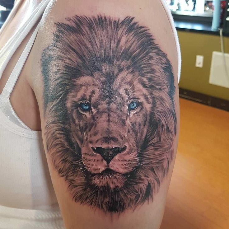 Beautiful Blue Eyes Lion Small Tattoos On Arm Lion Tattoo Lion Head Tattoos Lioness Tattoo