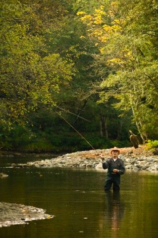 Fly-fishing along the Oyster River