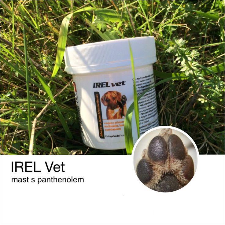 IREL Vet - mast s panthenolem pro regeneraci podrážděné pokožky a ošetření tlapek.
