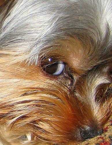 I got my eye on You.............