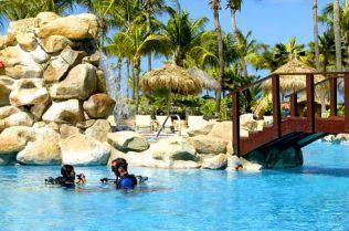 Occidental Grand Aruba #allinclusive resort. Take #scuba lessons in the pool!