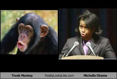 Michelle Obama Monkey Long Hairstyles