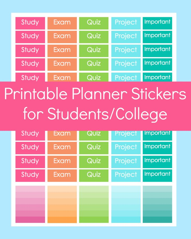 New to CommandCenter on Etsy: Erin Condren Stickers Planner Stickers Student Stickers College Student Planner Exam Planner Stickers Erin Condren Planner Stickers (1.99 USD)