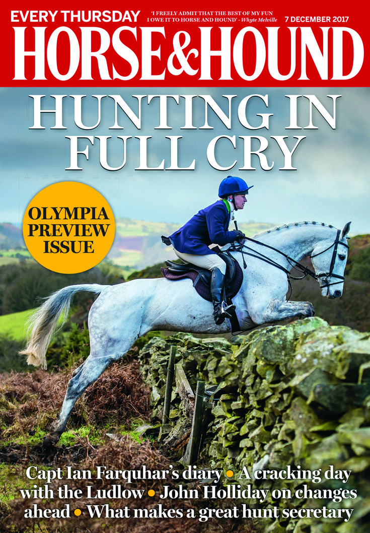 Check out this week's issue of Horse & Hound (7 December) — on sale now!
