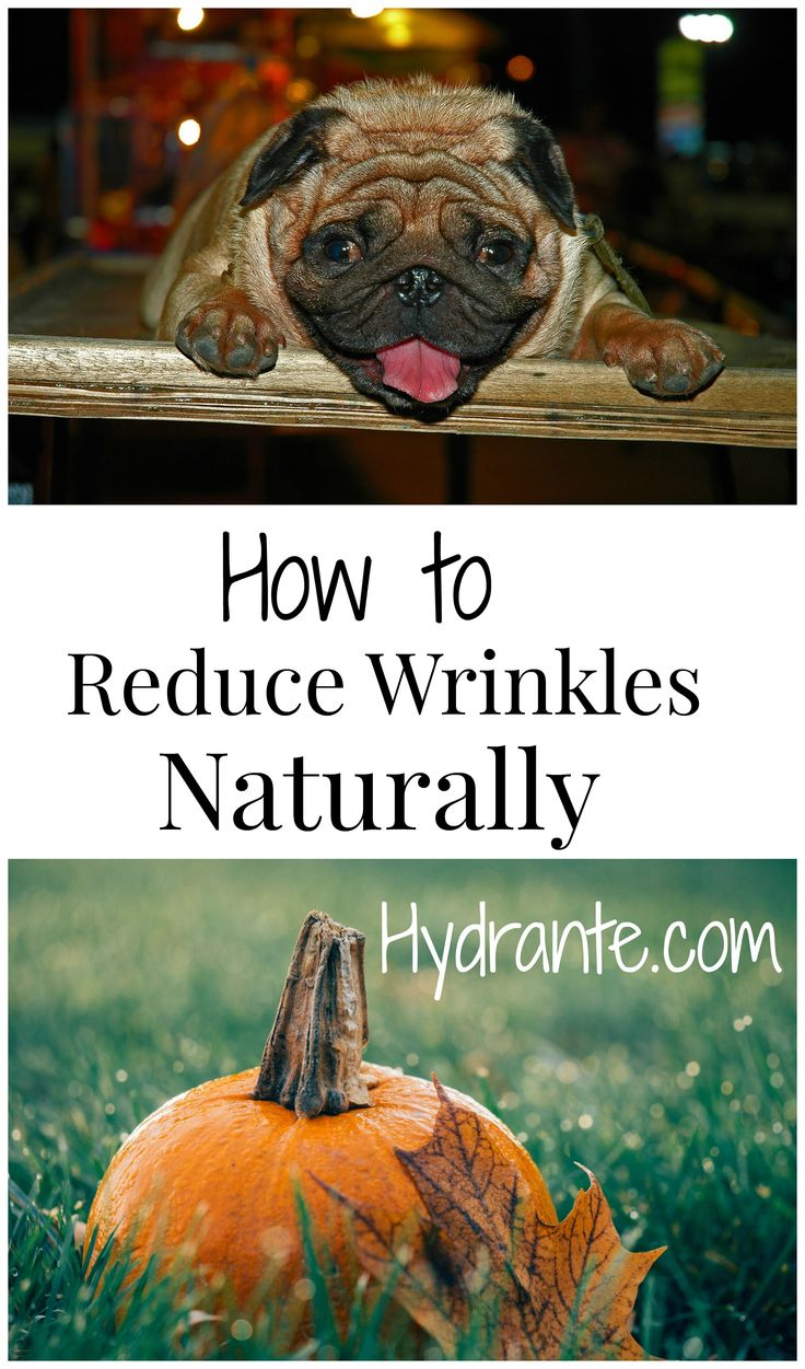 We all want wrinkle free skin and want to stop the aging process. None of us like to look in the mirror and see our face sag and look old. Learn how to have smoother, younger, healthier skin at Hydrante.com. #Hydrante http://hydrante.com/blogs/news/how-to-reduce-wrinkles