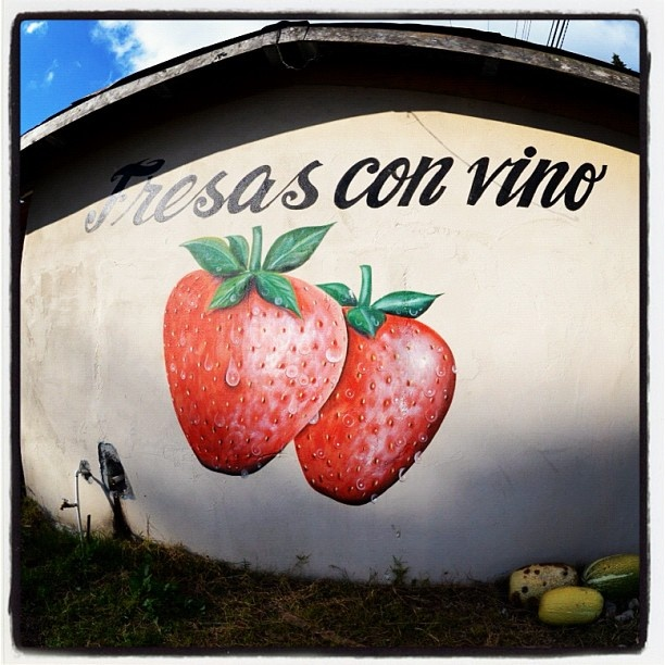 What's yummier than #strawberries with #wine?  #fresas con #vino #roadside   Somewhere outside #Volcan #Panama