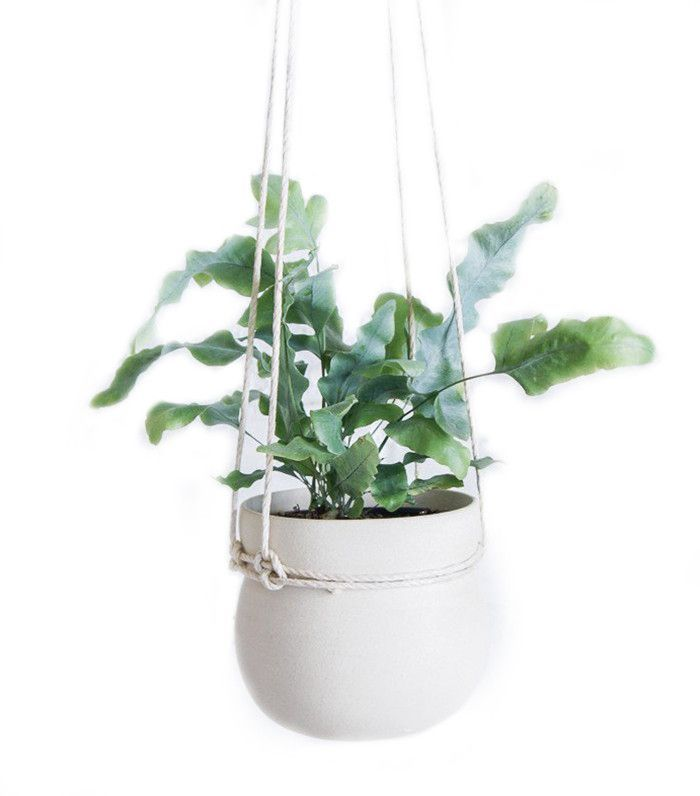 skillful design plant pots cheap. These Buys Prove  100 Is All You Need to Elevate Your Bathroom 32 best White plant pots images on Pinterest Plant Flower